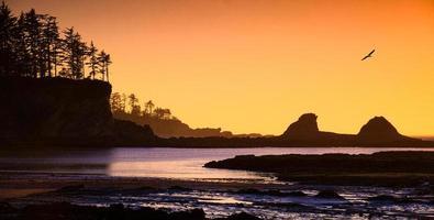 Panorama du coucher du soleil sur la plage de l'Oregon. oregon usa.