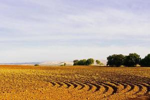 champs labourés photo