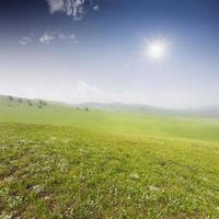 champ vert avec des nuages blancs