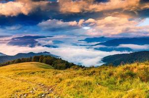 beau paysage d'été dans les montagnes.
