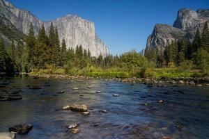 rivière dans la forêt près de formations rocheuses