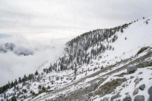 montagne hivernale de Californie