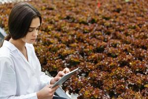 Femme en robe de laboratoire blanc examine la salade photo
