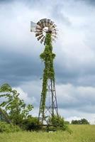 Moulin à vent noir et gris avec des plants de vigne