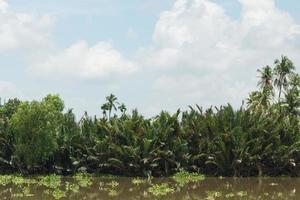 la rivière bang pakong en thaïlande