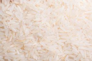 riz, photo en gros plan