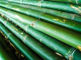 longues rangées de bambou photo