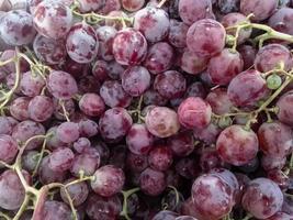 groupe de raisins rouges
