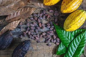 fruits de cacao frais et fèves de cacao photo