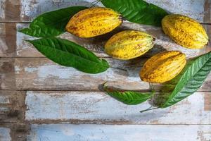 fruit de cacao jaune photo