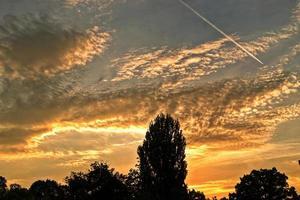 beau ciel nuageux sur les arbres pendant le coucher du soleil