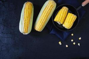 maïs en épis photo