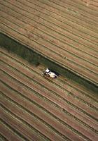 machine agricole sur le terrain
