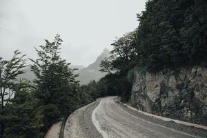 Route en béton noir entre les arbres verts pendant la journée