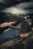 photographie aérienne du pont gris pendant la journée