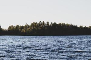 arbres verts près d'un plan d'eau photo