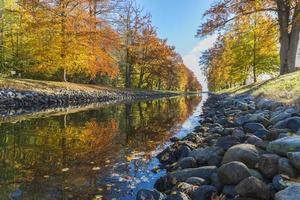 canal clair avec des feuilles d'érable d'automne photo