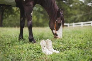 bottes blanches près du cheval