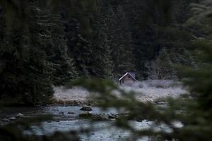 cabane sur la rivière