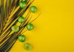 Vue de dessus des prunes vertes aigres avec une feuille de palmier sur fond jaune