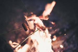 hot dogs sur le feu de camp