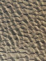 sable brun et noir pendant la journée