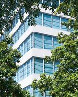 immeuble de grande hauteur entre les arbres