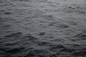 étendue d'eau sombre
