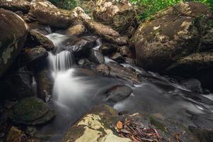 Ruisseau dans le parc national de la cascade de khao chamao