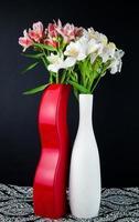 fleurs blanches et rouges dans des vases