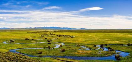 rivière dans les marais