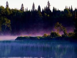 brume sur un lac