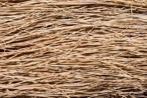 fond d'herbe sèche