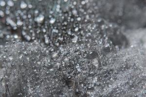 gouttes d'eau sur une plume
