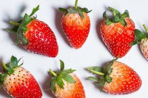 fraises sur fond blanc