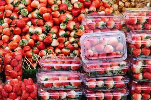 groupe de fraises fraîches