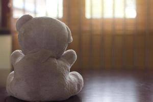 ours en peluche et une fenêtre photo