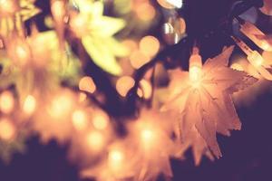 lumières d'automne la nuit photo