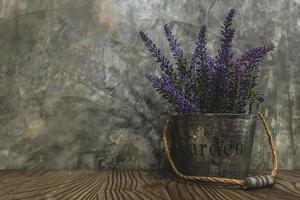 lavande sur fond gris photo