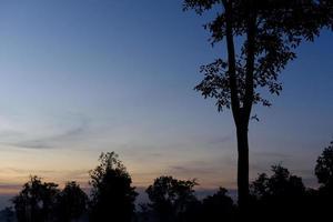 silhouette de l'arbre au crépuscule avec le ciel. photo