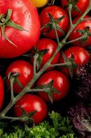 Vue de dessus des légumes comme la coriandre basilic et les tomates