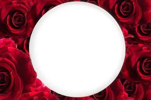 fond floral rose rouge