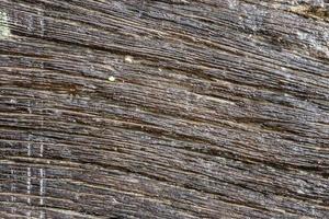fond de modèle en bois