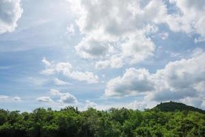 ciel et nuages au dessus de la forêt