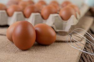 œufs de poule crus biologiques photo