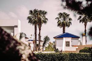Oriheula, Espagne, 2020 - Bâtiment en béton blanc et bleu près de palmiers verts pendant la journée photo