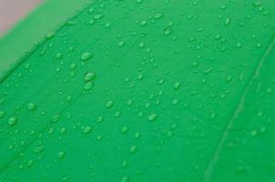 gouttes de pluie sur un parapluie vert photo