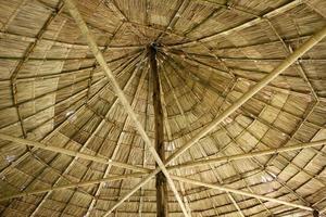 toit de canapée de plage photo