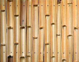 texture de mur en bambou photo