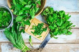 herbes à la menthe et herbes culantro pour la santé